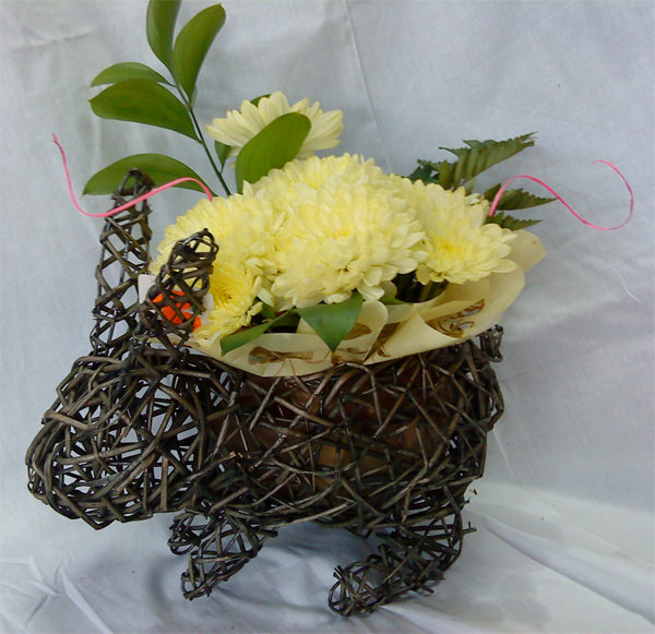 Bunny with chrysanthemum